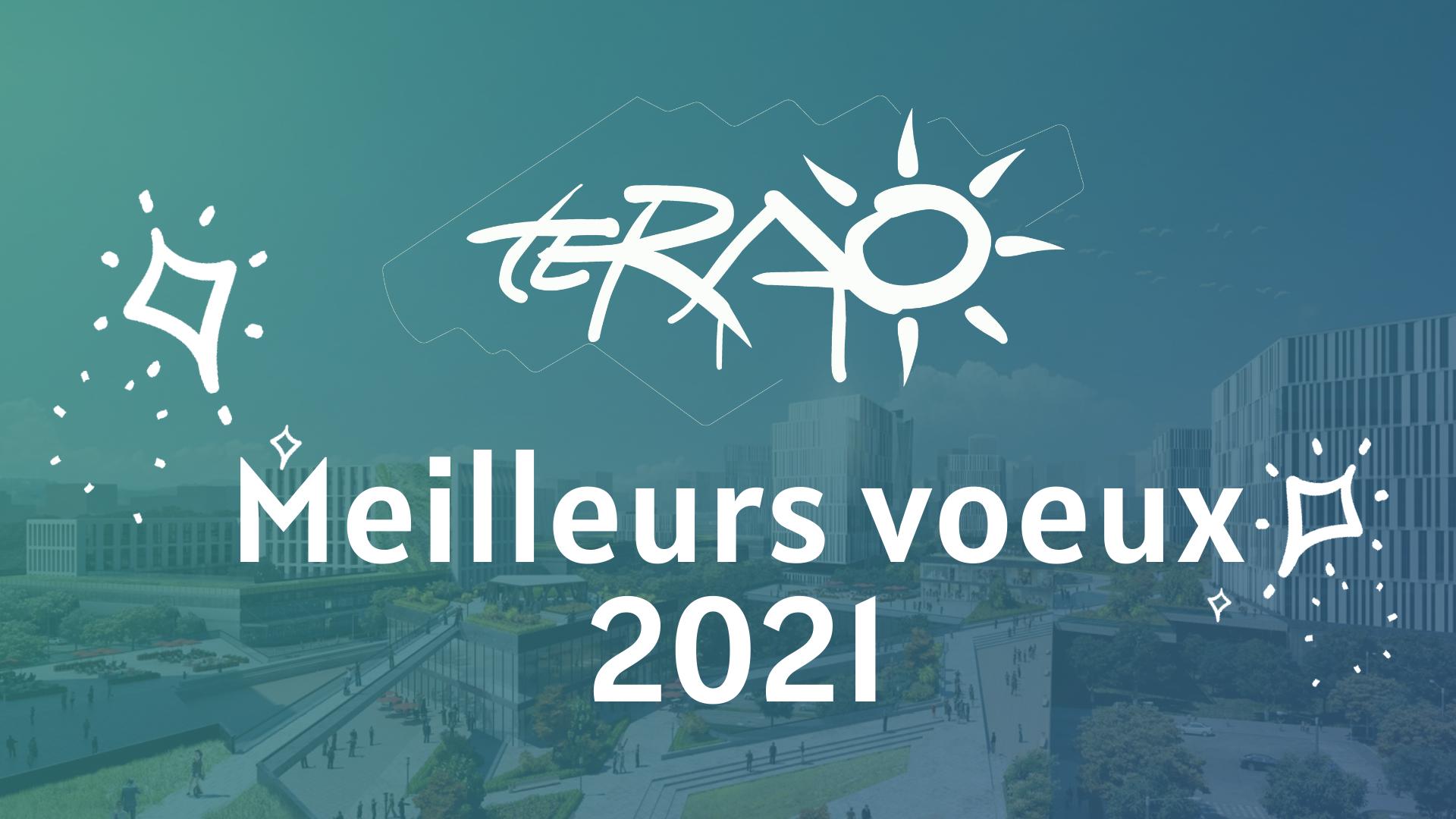 TERAO vous souhaite ses meilleurs voeux 2021